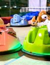 Kids Bumper Car 03