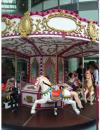 Medium Carousel