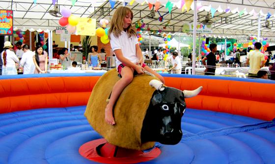Rodeo Bull 03