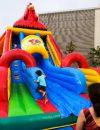 Rooster Slide 03