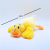 Yellow_Duck_With_Measurement